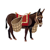 Donkey with wicker baskets. Vector illustration isolated on the white background