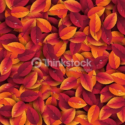 3d Realistic Autumn Leaves With Water Drop Autumnal Background In