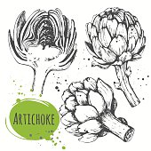 Vector illustration with sketch vegetable. Black and white.