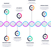 Abstract dna molecule vector business infographic with options. Chemistry infographic molecule, business flow chart scientific illustration