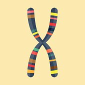 Abstract Illustration of chromosome in modern flat design