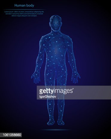 Abstract image of a human body in the form of a starry sky or space, consisting of points, lines, and shapes in the form of planets, stars and the universe. Low poly vector background. : stock vector