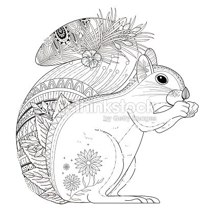 Adorable Squirrel Coloring Page Vector Art | Thinkstock