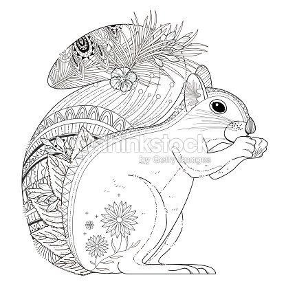 adorable squirrel coloring page vector art