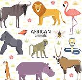 Vector illustration of African animals and birds: hippopotamus, lion, gorilla, baboon, flamingos, cobra, wildebeest, oryx antelope, meerkat, isolated on transparent background.
