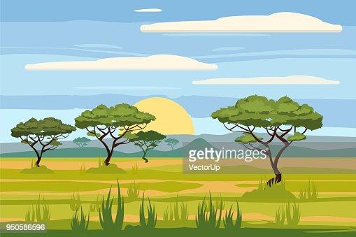African landscape, savannah, sunset, vector, illustration, cartoon style, isolated : stock vector