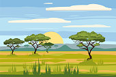 African landscape, savannah, sunset vector illustration cartoon style
