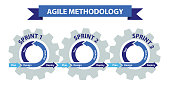 Agile software development methodology, Management concept