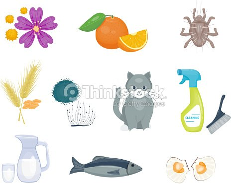 Allergy symbols disease healthcare food viruses health flat illness allergen symptoms disease information vector illustration