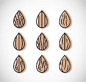 Almond icon vector set
