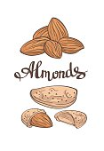 Almonds.Hand drawn  Vector illustration.