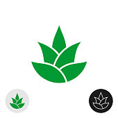 Aloe vera plant isolated icon. Aloe leaves symbol. Natural plant silhouette. Pine or hop simple vector sign.