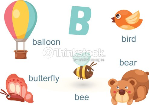 b letterbeebearballoonbirdbutterfly