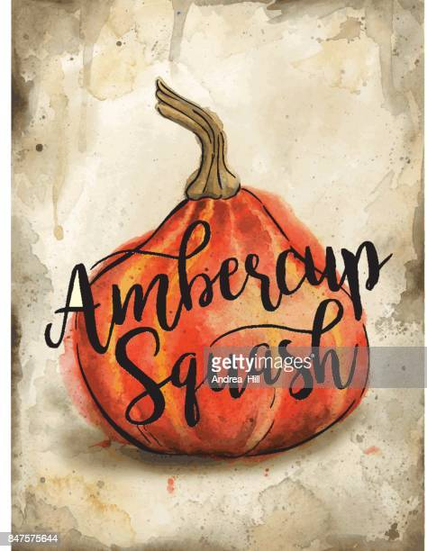 Ambercup Squash Painted in Watercolor on Rustic Brown Background. Vector EPS10