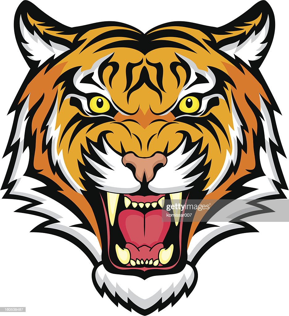 an animated colorful snarling tiger vector art thinkstock rh thinkstockphotos com tiger face vector art tiger vector free
