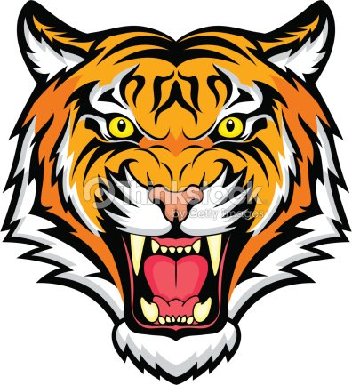 an animated colorful snarling tiger vector art thinkstock