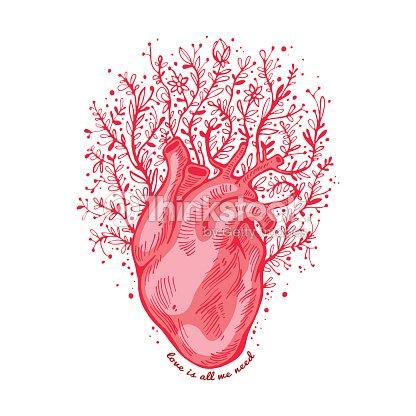 Anatomía Corazón Con Flores Lema El Amor Es Todo Lo Que Necesitamos ...