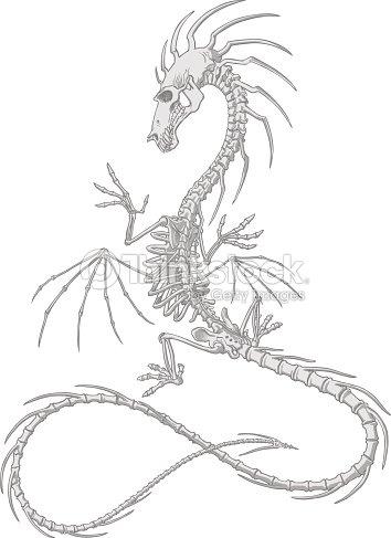 Anatomically Detallada Dragon Esqueleto Completo Con Alas Cola Picos ...
