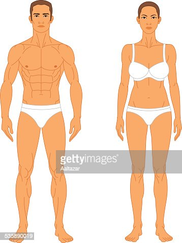 anatomy man and woman vector art | getty images, Human Body