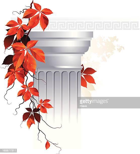 Ancient column with vine
