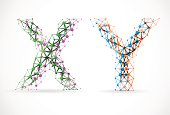 An abstract image of x and y chromosomes. Illustration contains transparency and blending effects, eps 10