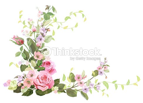 Marco Angular Con Rosas Flor De Primavera Ramas Con Flores De árbol ...
