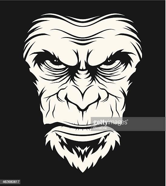 Angry ape head
