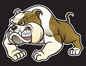 vector of angry bulldog