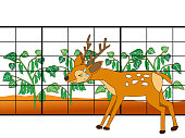 Wild deer and wild boar are fencing to eat crops.