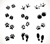 Animal and human paw and footprint set  - simple vector illustrations isolated on white background
