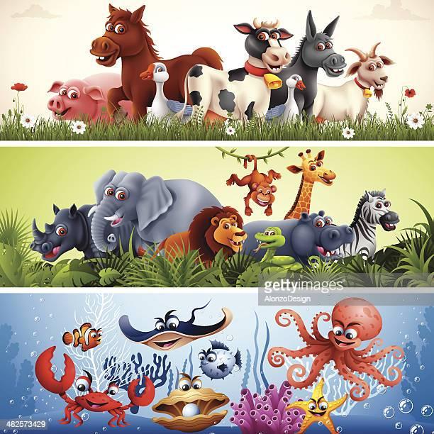 Animal Banners