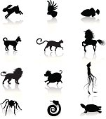 A collection of twelve animal icons isolated on white.See similar images: