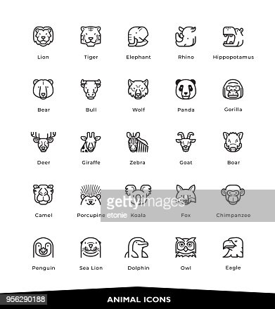 Animal icons : stock vector