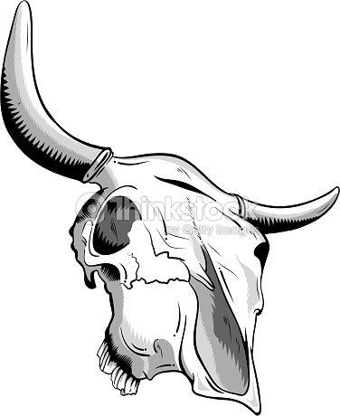 animal skull vector art thinkstock