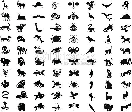 Animals, birds, insects icons