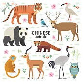 Vector illustration of Chinese animals: panda, red panda, David deer, tiger, crane, monkey, ibis, isolated on white backgroun
