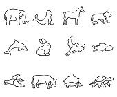 animals icons set, thin line design. various animals, linear symbols collection. zoo animals, isolated vector illustration.
