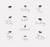 Set of animals mini floral graphic signs bear, fish, monkey, fox, pig, dograbbit, elephant, cheetah with lettering drawing on dirty background