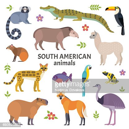 Animals of South America. : Arte vetorial