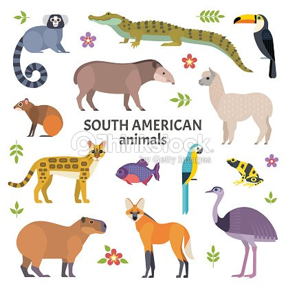 Animals of South America. : stock vector