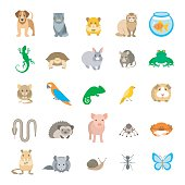 Animals pets vector flat colorful icons set. Cartoon illustrations of various domestic animals. Mammals, rodents, amphibian, insects, birds, reptiles, which people take care of at home. Isolated on wh
