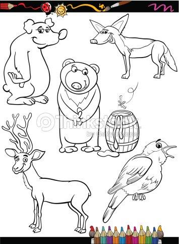 Tiere Set Comic Coloring Seite Vektorgrafik  Thinkstock