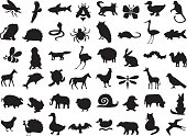 silhouettes of wild and domestic animals, birds and insects on a white background.