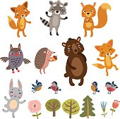 Vector characters animal