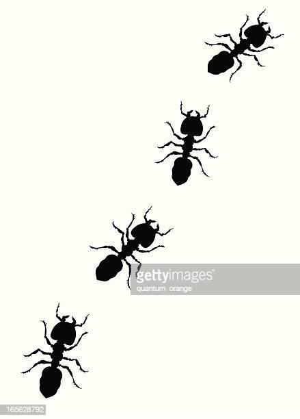 cartoon ants picnic