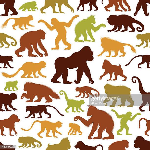 Apes and Monkeys Pattern