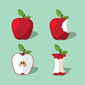 Apple icon collection. EPS 10 vector.