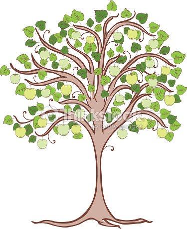 Apple Tree With Green Apples Stock Vector Thinkstock