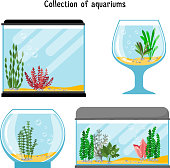 Aquarium forms vector illustration. Decoration home empty glass tanks isolated on white background. Set of transparent aquarium for fish