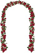 Arch of red climbing roses. Floral design. Wedding decoration. Vector illustration, detailed, isolated on white background.